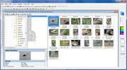 画像ブラウザ機能。画像情報を把握しながらファイルを管理できる